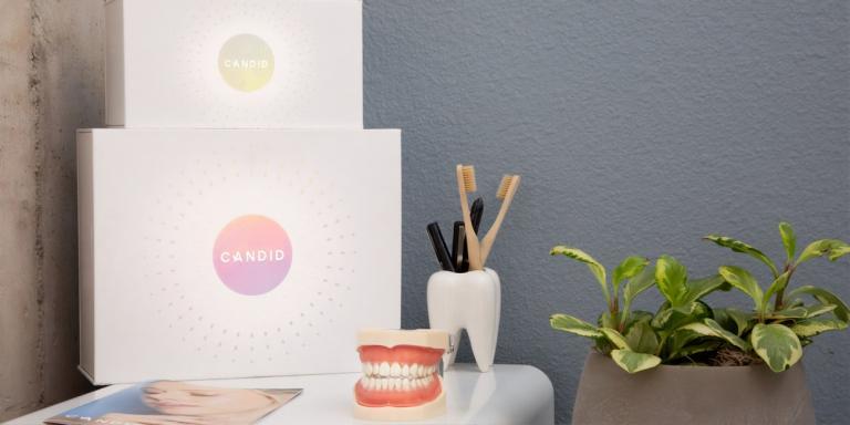 preventative dental care tarpon springs